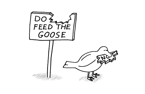 feed_the_goose