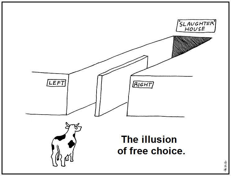Abstruse Goose on Free Choice